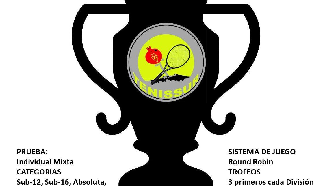 TENISSUR CUP 2021................(En juego)